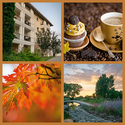 Autumn days in Hotel Arcanum
